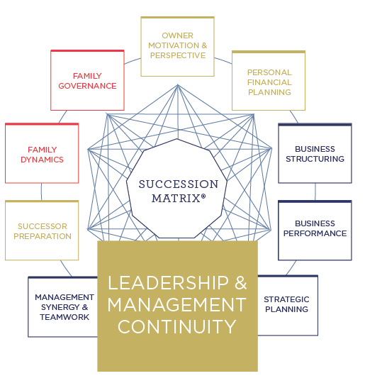 succession planning for management