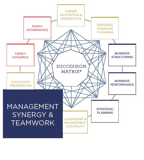 business succession planning advisor